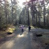 10 tips for enjoying Center Parcs Whinfell