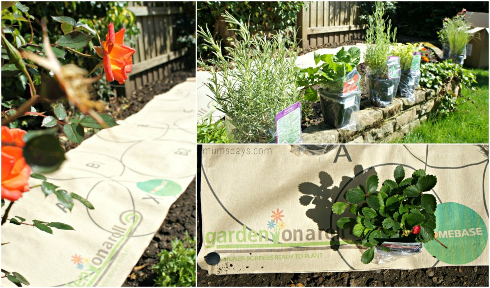 Garden Ideas - Before and after post with our ideas for the perfect kids and adults garden - Garden in a roll