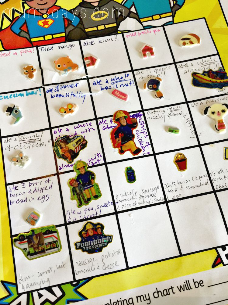 Fussy eater? Then check out these 10 Tips for sticker chart success!