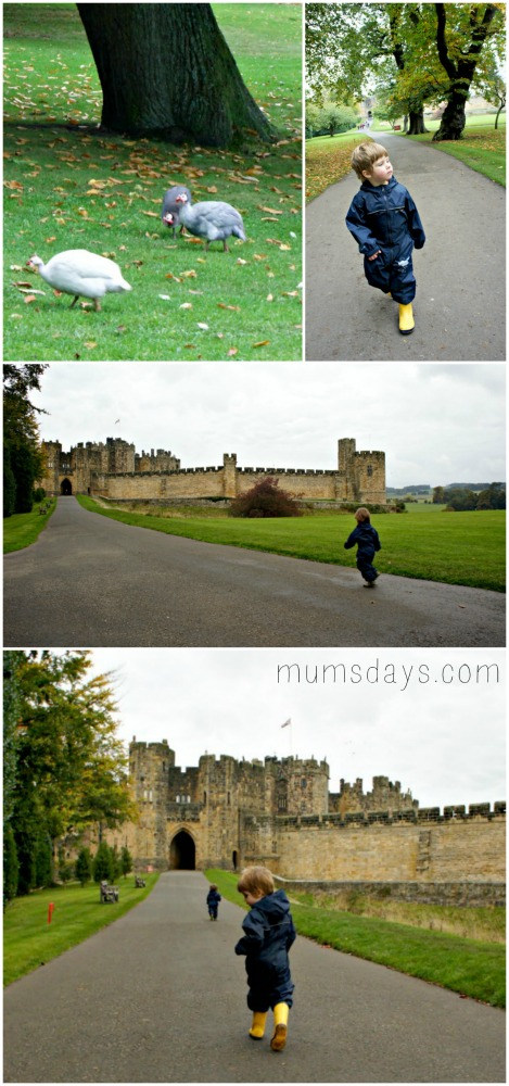Alnwick Castle - 5 reasons your kids will love it (where Harry Potter was filmed!)